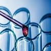 Gary Neil Cramer offers NewBornGene ID from Syncier BioTech Picture